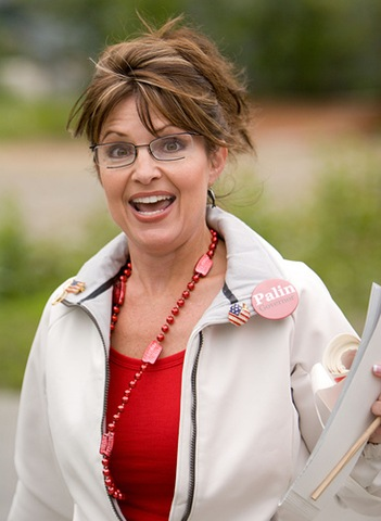Palin vs. Paylin | The Perverted Nerd